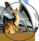 澳大利亚巴罗萨山谷西拉领宾原红干红葡萄酒红酒